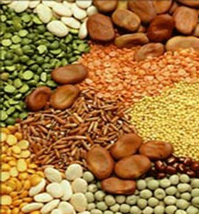 FOOD ITEMS And FOOD GRAINS