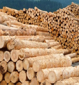 WOOD SUPPLIERS